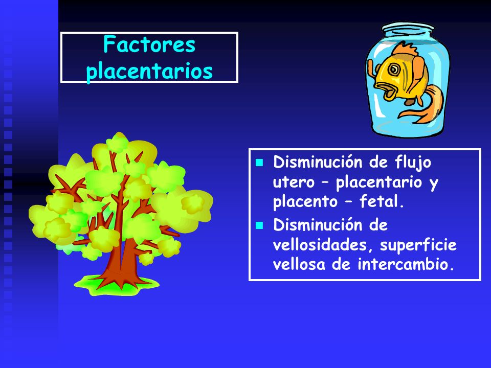 Factores placentarios