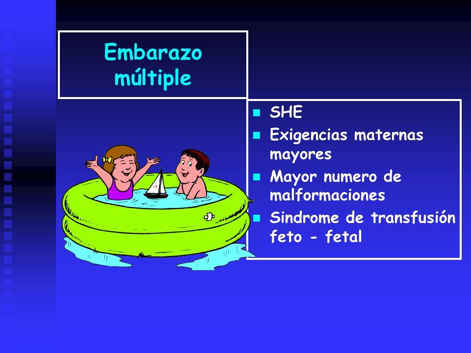 Embarazo múltiple SHE Exigencias maternas mayores