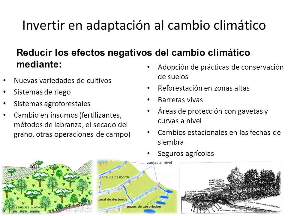 Invertir en adaptación al cambio climático