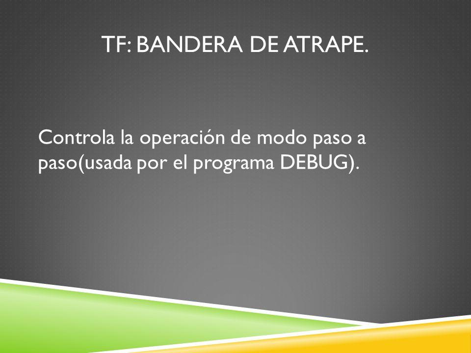 TF: Bandera de atrape. Controla la operación de modo paso a paso(usada por el programa DEBUG).
