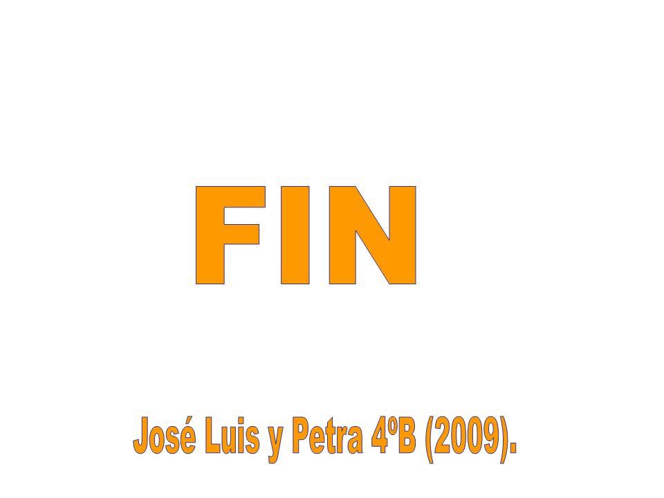 FIN José Luis y Petra 4ºB (2009).