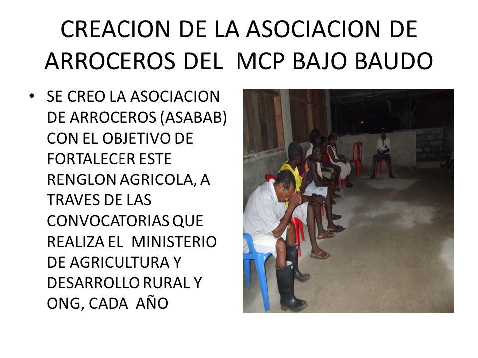 CREACION DE LA ASOCIACION DE ARROCEROS DEL MCP BAJO BAUDO