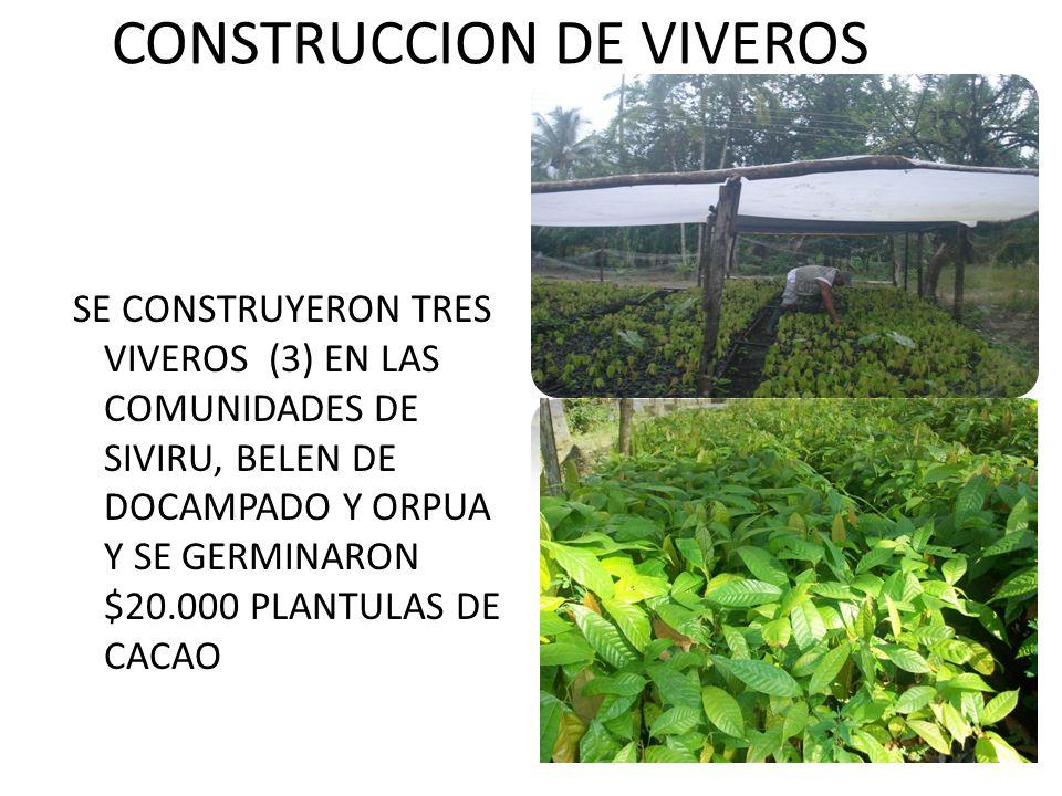 CONSTRUCCION DE VIVEROS