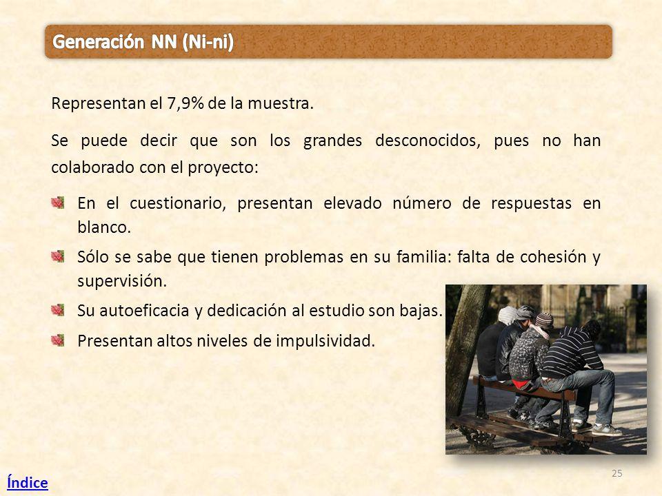 Generación NN (Ni-ni) Representan el 7,9% de la muestra.