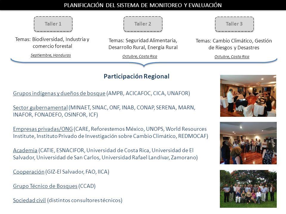 Participación Regional