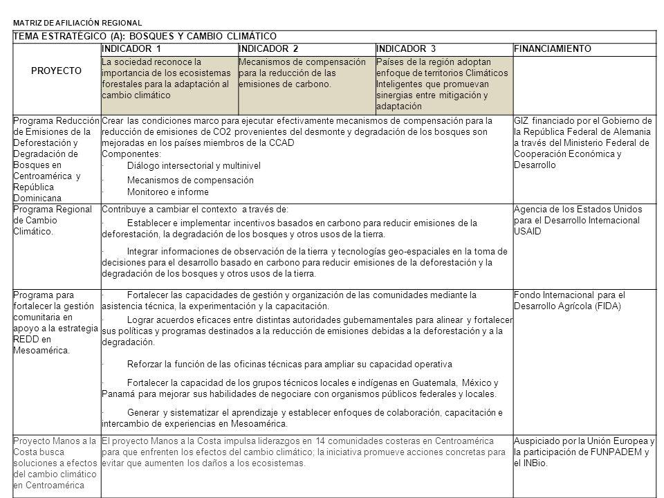 TEMA ESTRATÉGICO (A): BOSQUES Y CAMBIO CLIMÁTICO