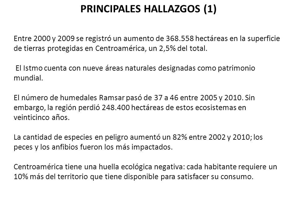 PRINCIPALES HALLAZGOS (1)