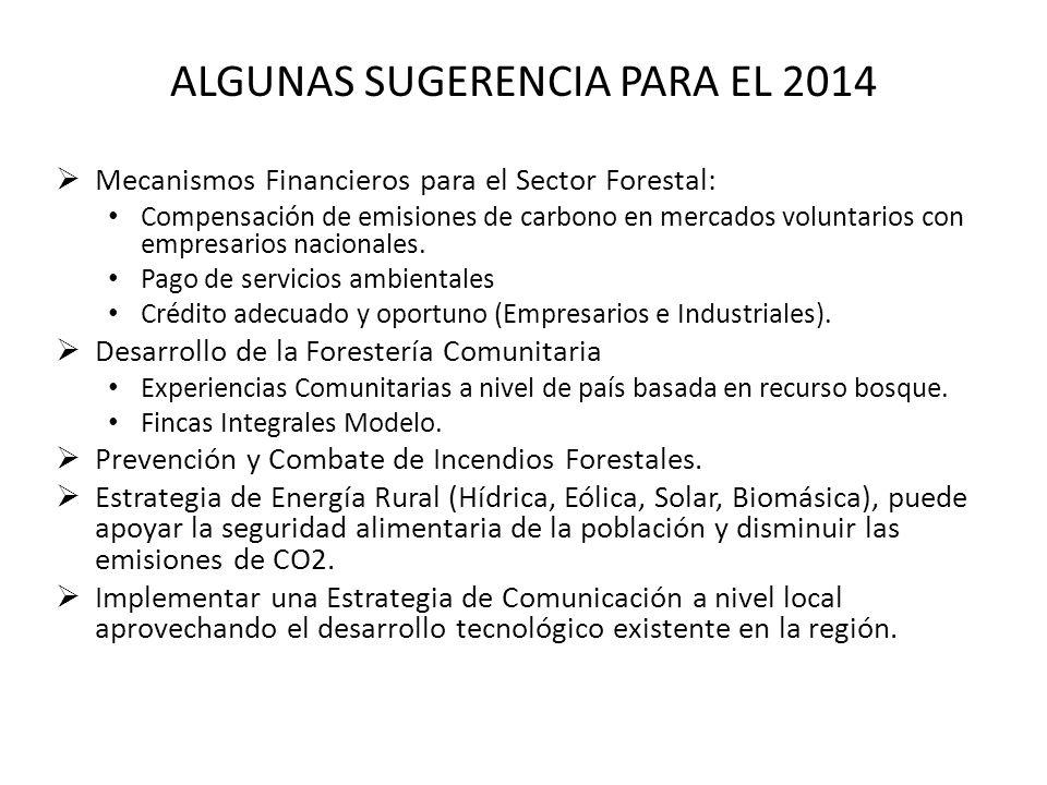 ALGUNAS SUGERENCIA PARA EL 2014