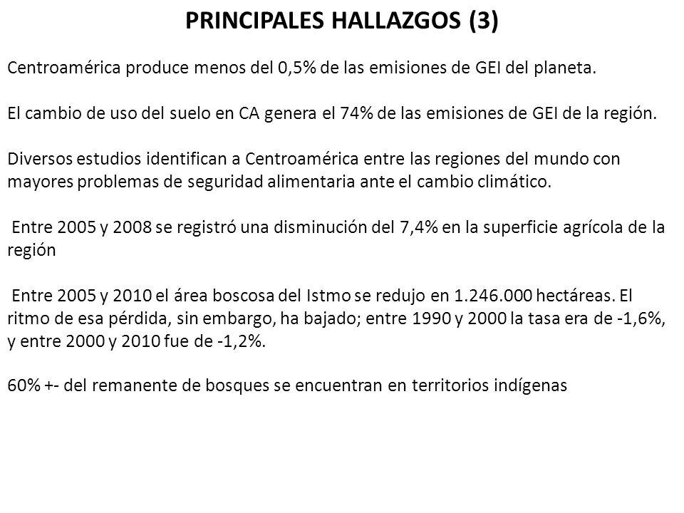 PRINCIPALES HALLAZGOS (3)