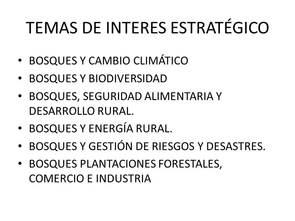 TEMAS DE INTERES ESTRATÉGICO
