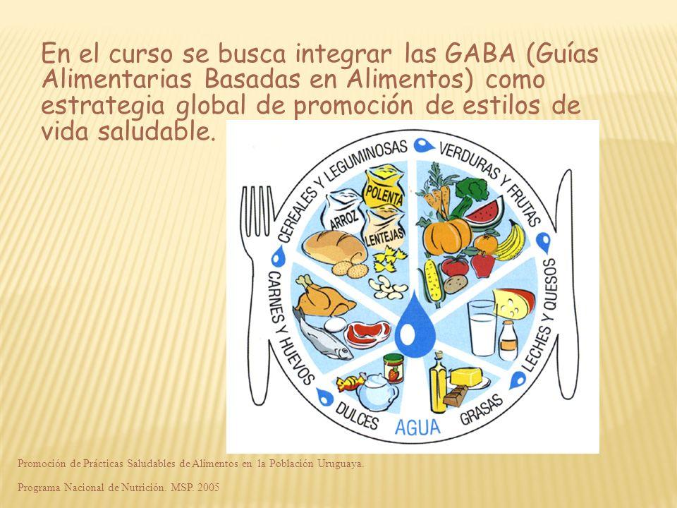 En el curso se busca integrar las GABA (Guías Alimentarias Basadas en Alimentos) como estrategia global de promoción de estilos de vida saludable.