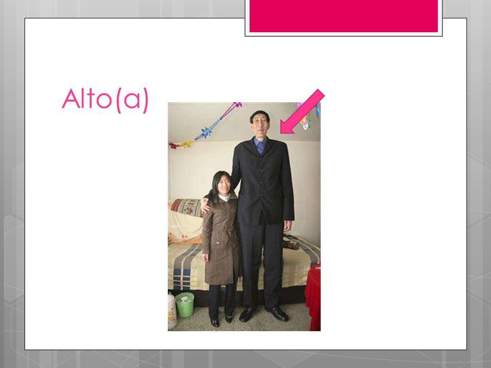 Alto(a)