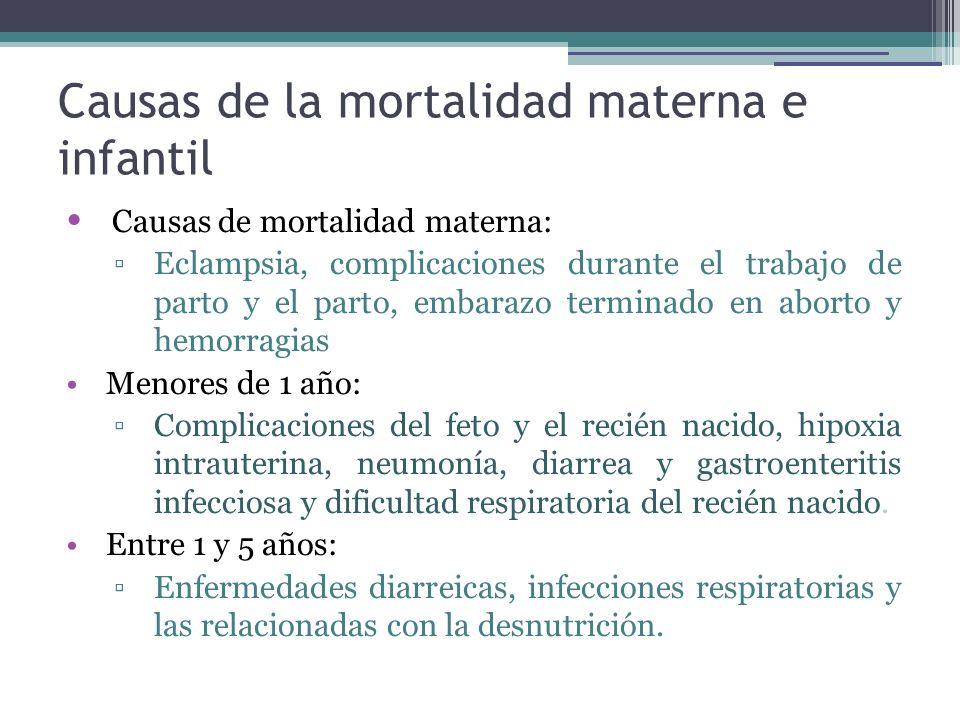 Causas de la mortalidad materna e infantil