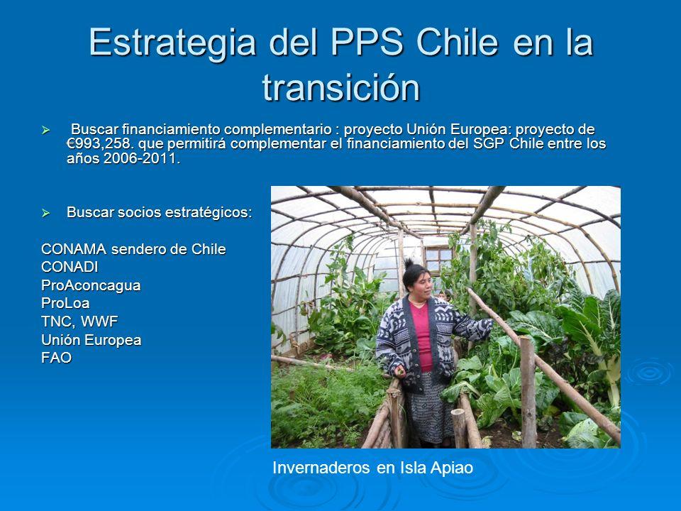 Estrategia del PPS Chile en la transición