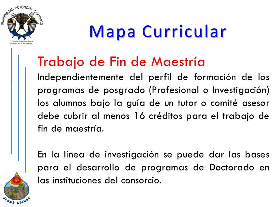 Mapa Curricular Trabajo de Fin de Maestría