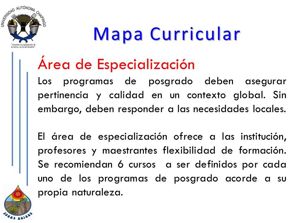 Mapa Curricular Área de Especialización