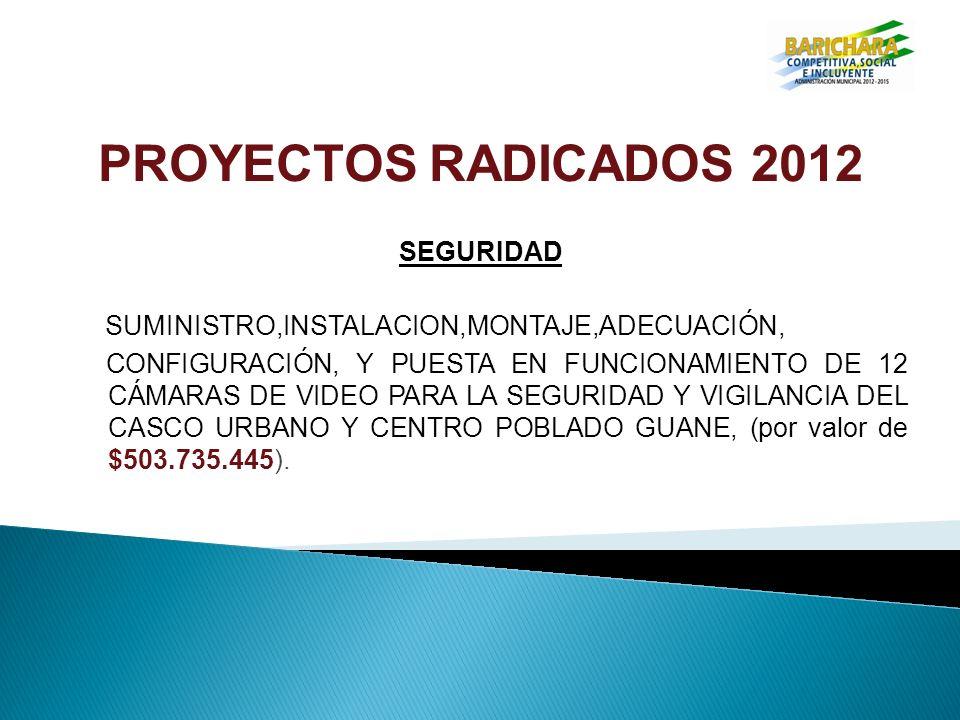 PROYECTOS RADICADOS 2012 SEGURIDAD