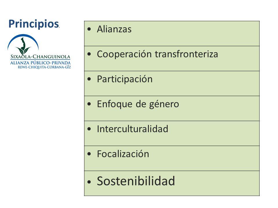 Principios, Alianzas Cooperación transfronteriza Participación