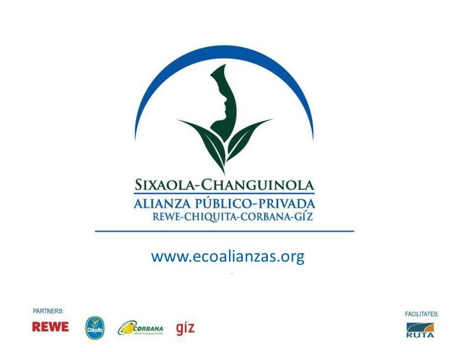 www.ecoalianzas.org