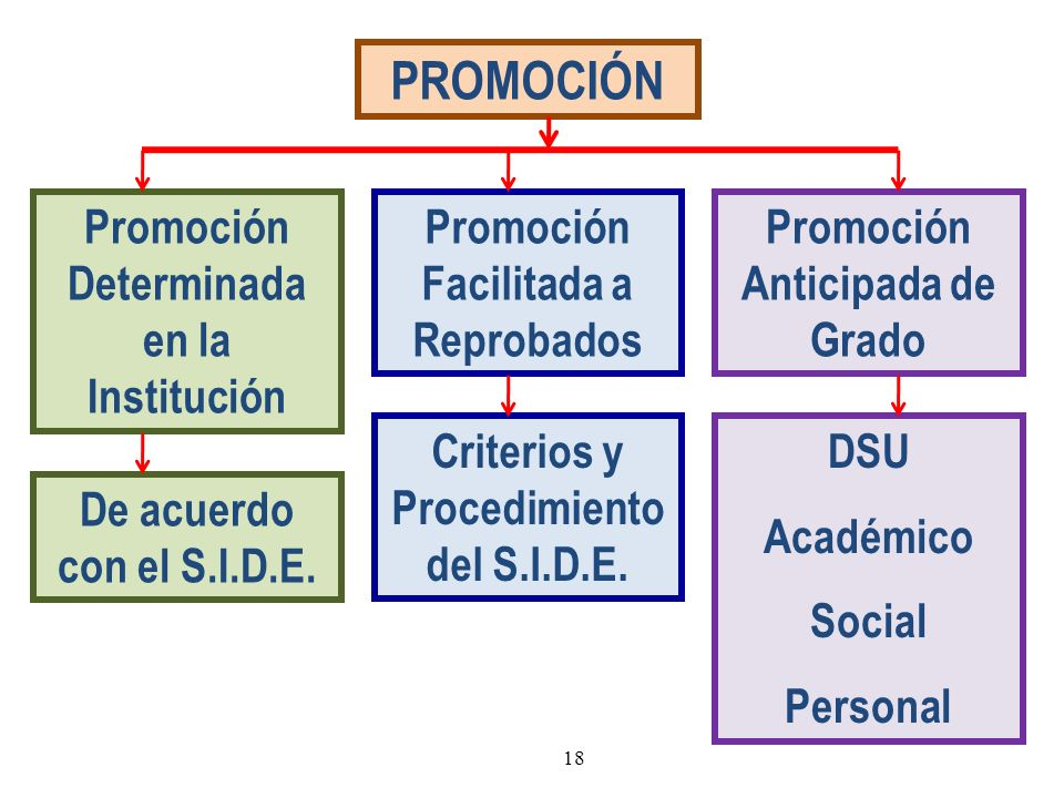 PROMOCIÓN Promoción Determinada en la Institución