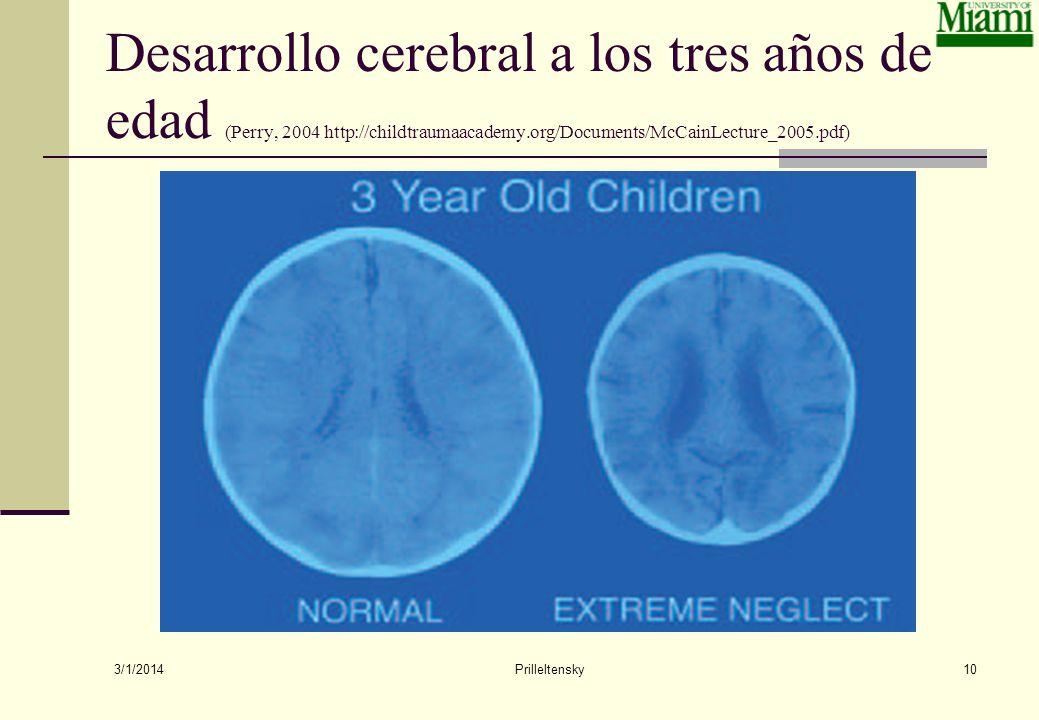 Desarrollo cerebral a los tres años de edad (Perry, 2004 http://childtraumaacademy.org/Documents/McCainLecture_2005.pdf)
