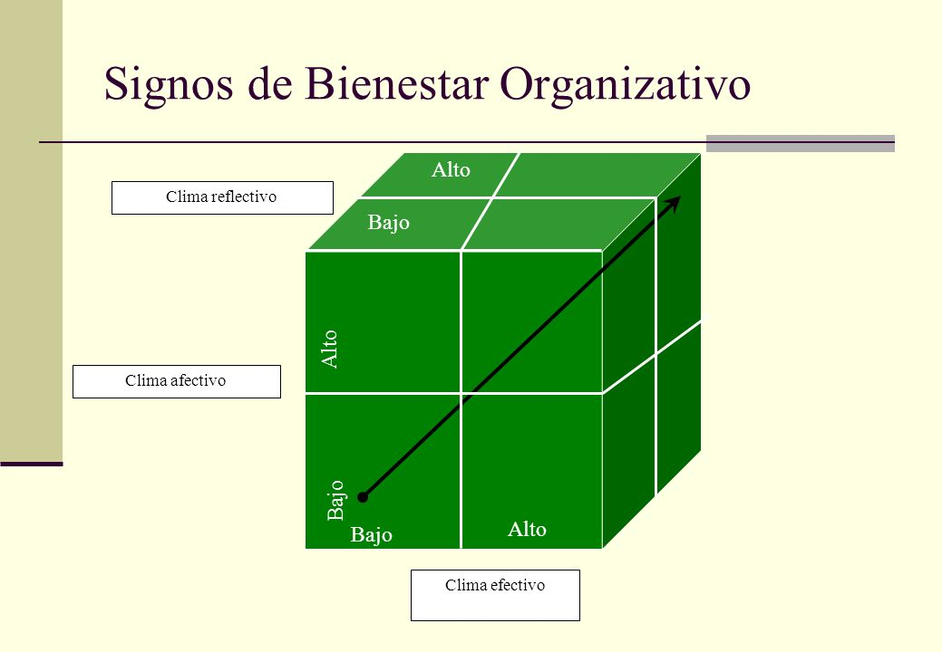 Signos de Bienestar Organizativo