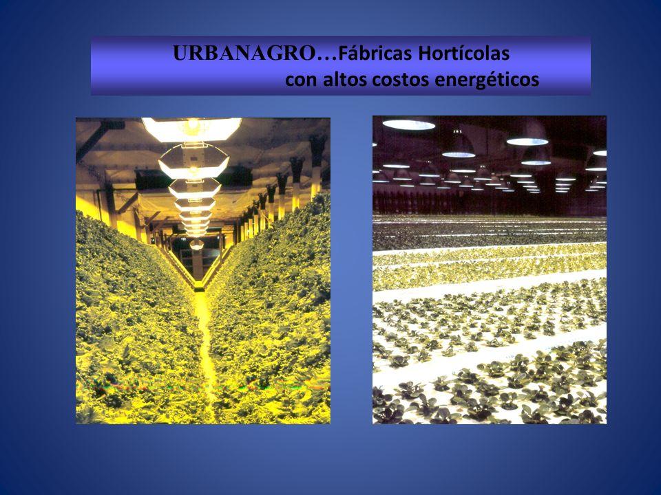 URBANAGRO…Fábricas Hortícolas con altos costos energéticos