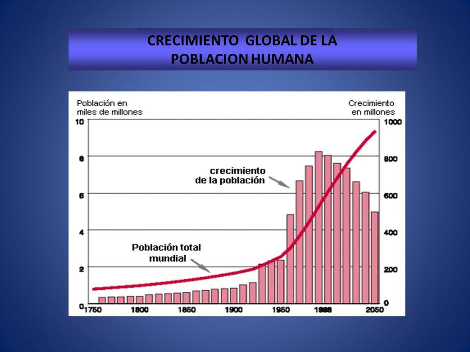 CRECIMIENTO GLOBAL DE LA