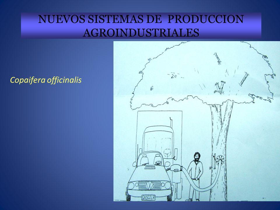NUEVOS SISTEMAS DE PRODUCCION AGROINDUSTRIALES
