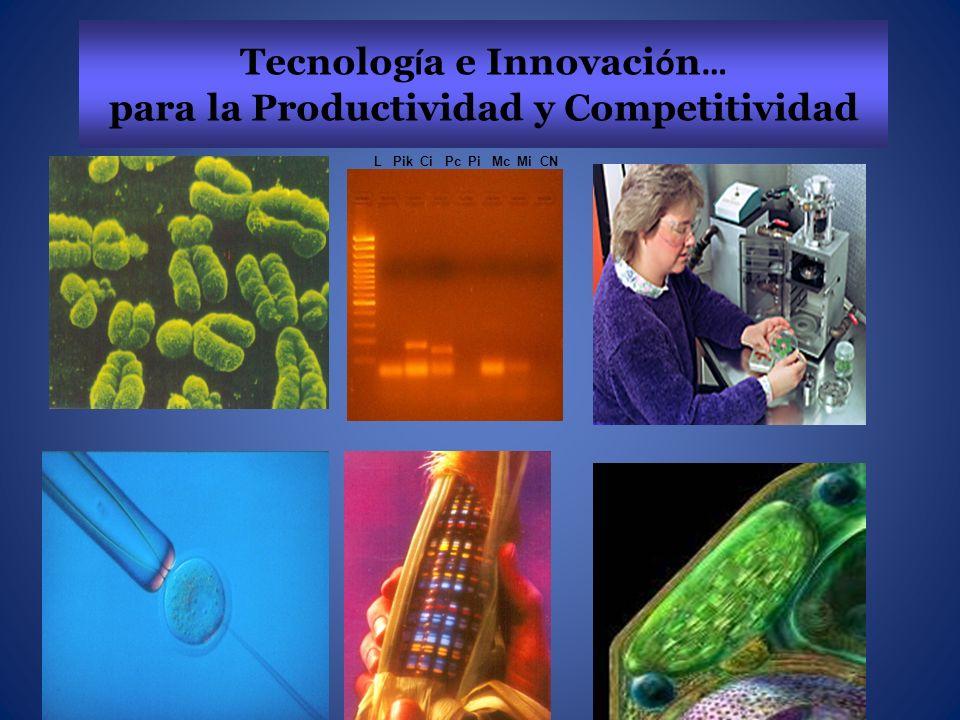 Tecnología e Innovación… para la Productividad y Competitividad