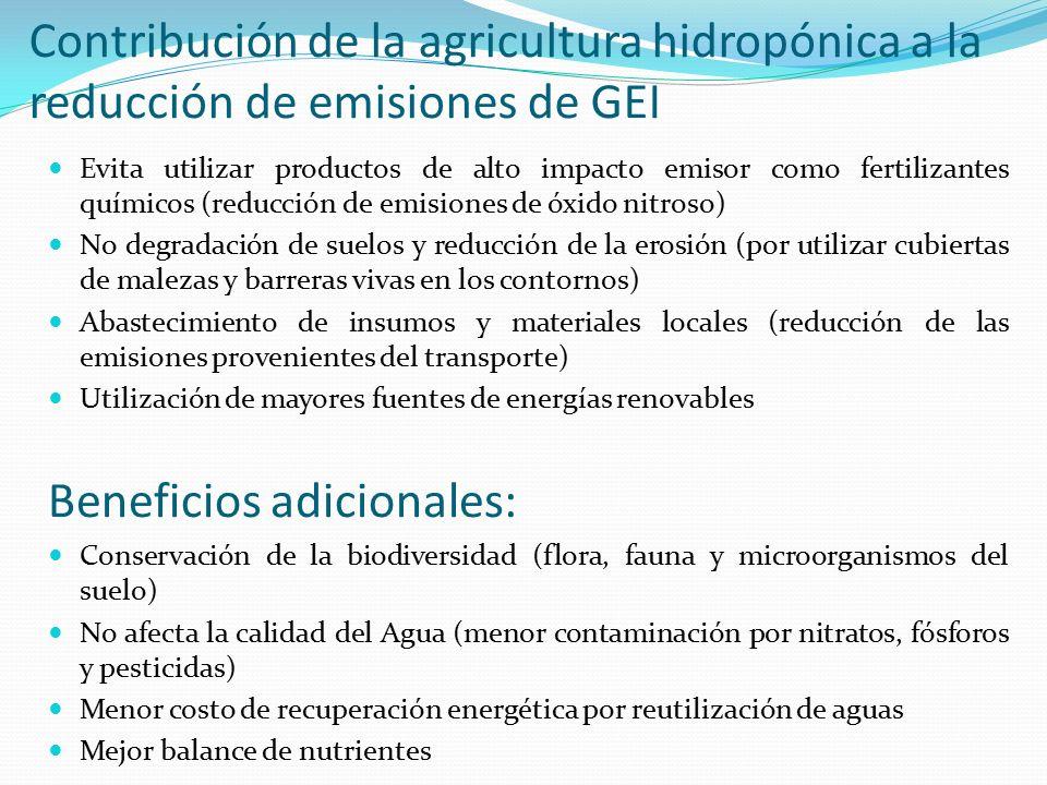 agricultura tradicional vs cultivos hidropnicos beneficios adicionales