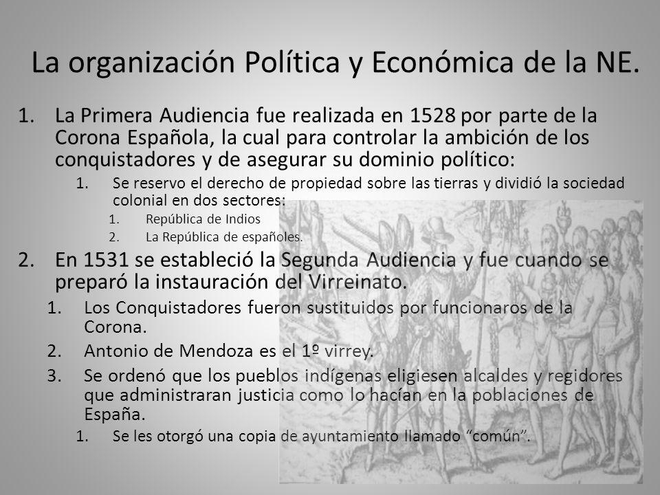 La organización Política y Económica de la NE.