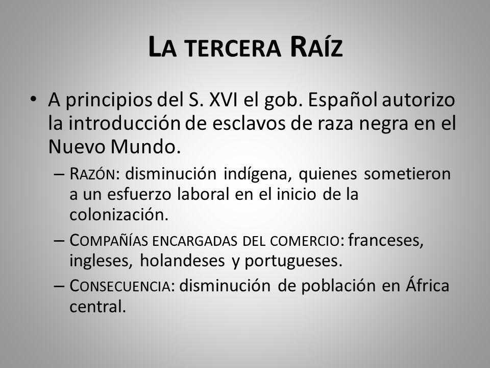 La tercera Raíz A principios del S. XVI el gob. Español autorizo la introducción de esclavos de raza negra en el Nuevo Mundo.