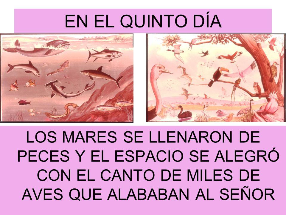 EN EL QUINTO DÍALOS MARES SE LLENARON DE PECES Y EL ESPACIO SE ALEGRÓ CON EL CANTO DE MILES DE AVES QUE ALABABAN AL SEÑOR.