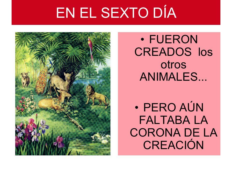 EN EL SEXTO DÍA FUERON CREADOS los otros ANIMALES...