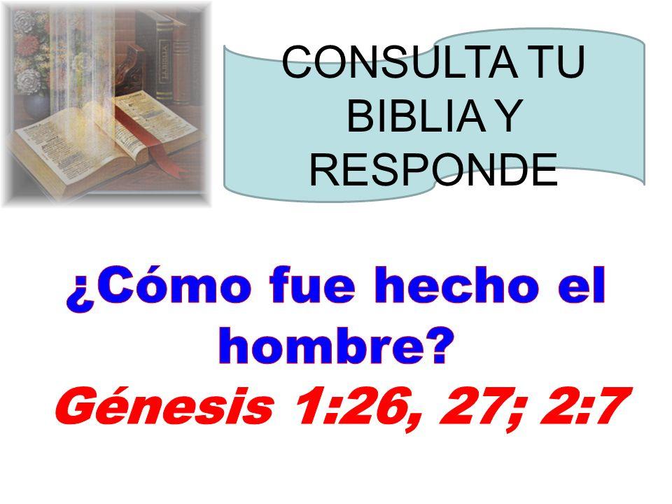 ¿Cómo fue hecho el hombre Génesis 1:26, 27; 2:7