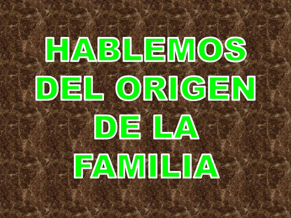HABLEMOS DEL ORIGEN DE LA FAMILIA