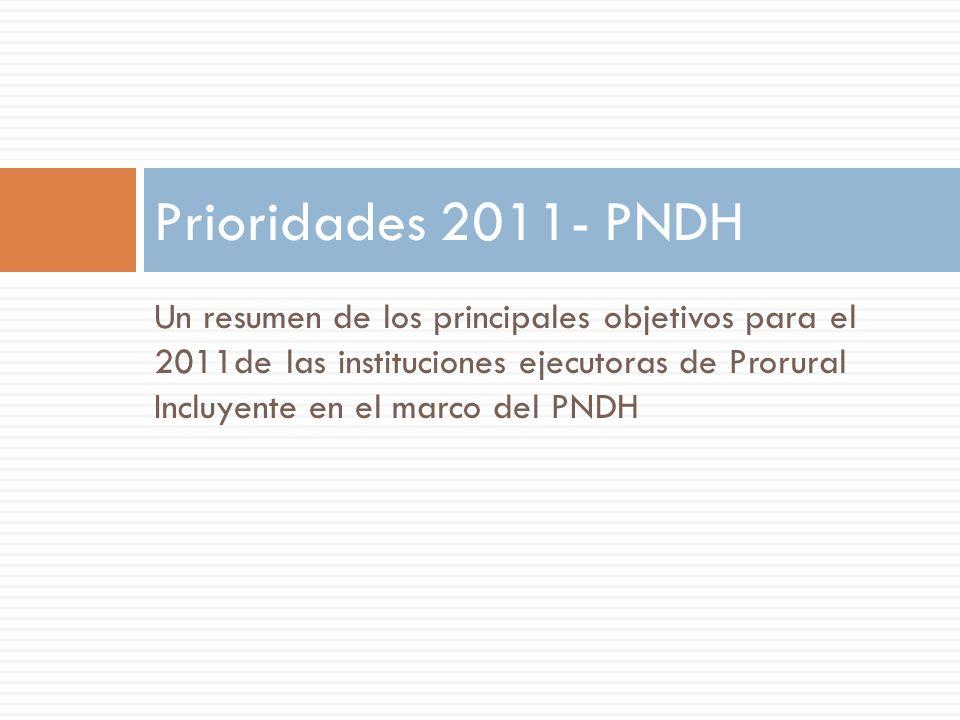 Prioridades 2011- PNDH