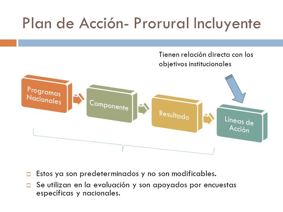 Plan de Acción- Prorural Incluyente