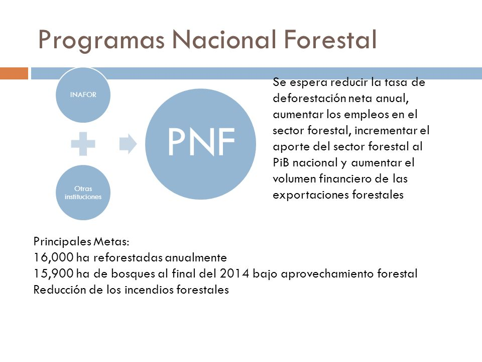 Programas Nacional Forestal