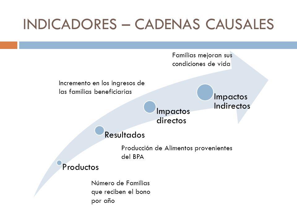 INDICADORES – CADENAS CAUSALES