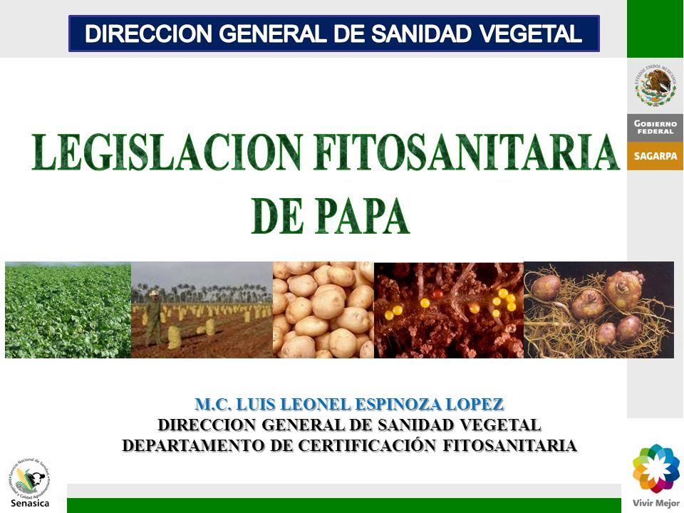 LEGISLACION FITOSANITARIA DE PAPA