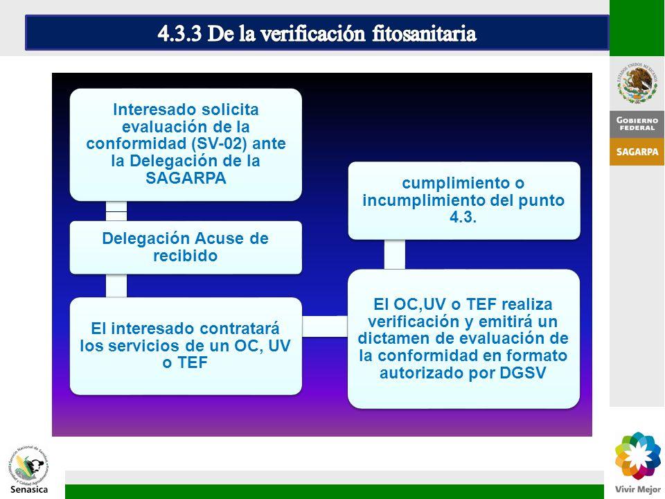 4.3.3 De la verificación fitosanitaria