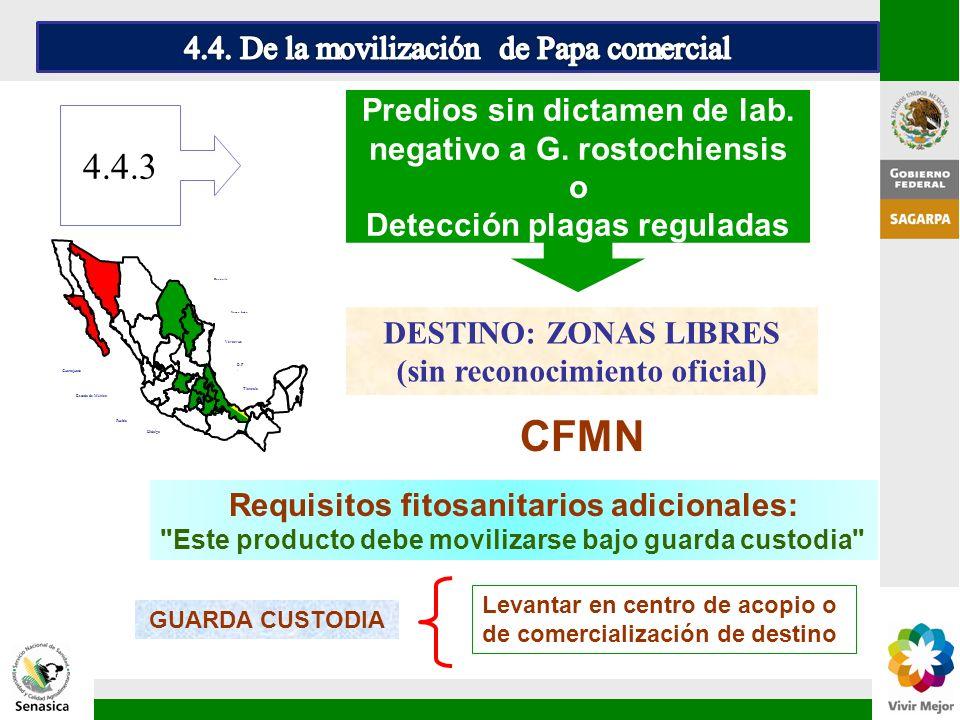 CFMN 4.4.3 4.4. De la movilización de Papa comercial
