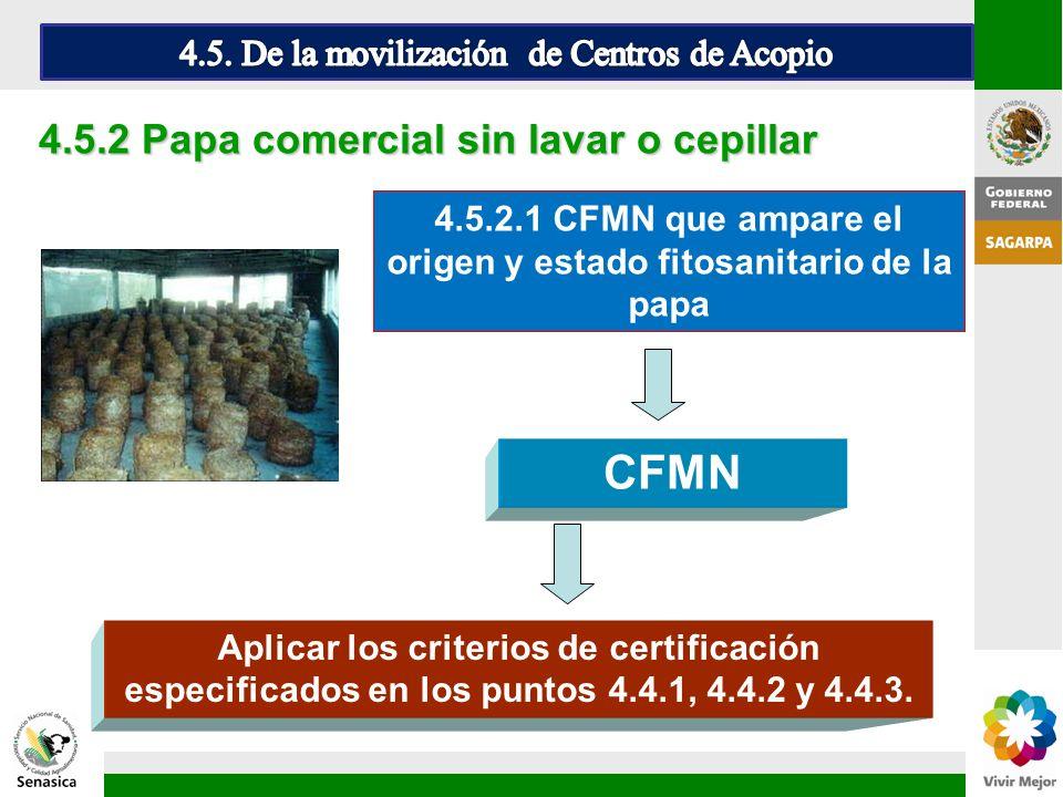 CFMN 4.5.2 Papa comercial sin lavar o cepillar