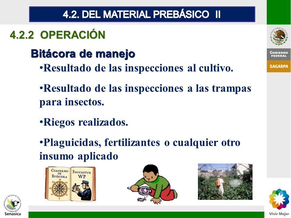 4.2. DEL MATERIAL PREBÁSICO II