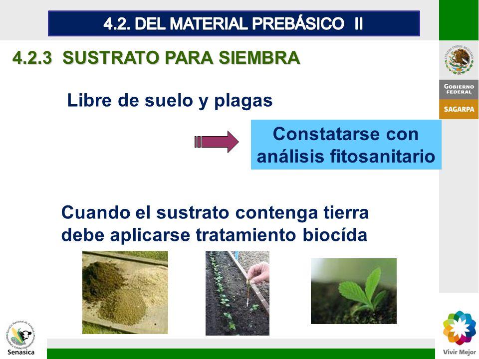 Constatarse con análisis fitosanitario