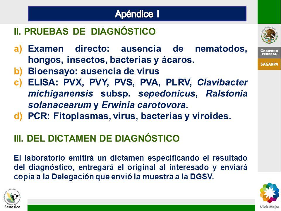 II. PRUEBAS DE DIAGNÓSTICO
