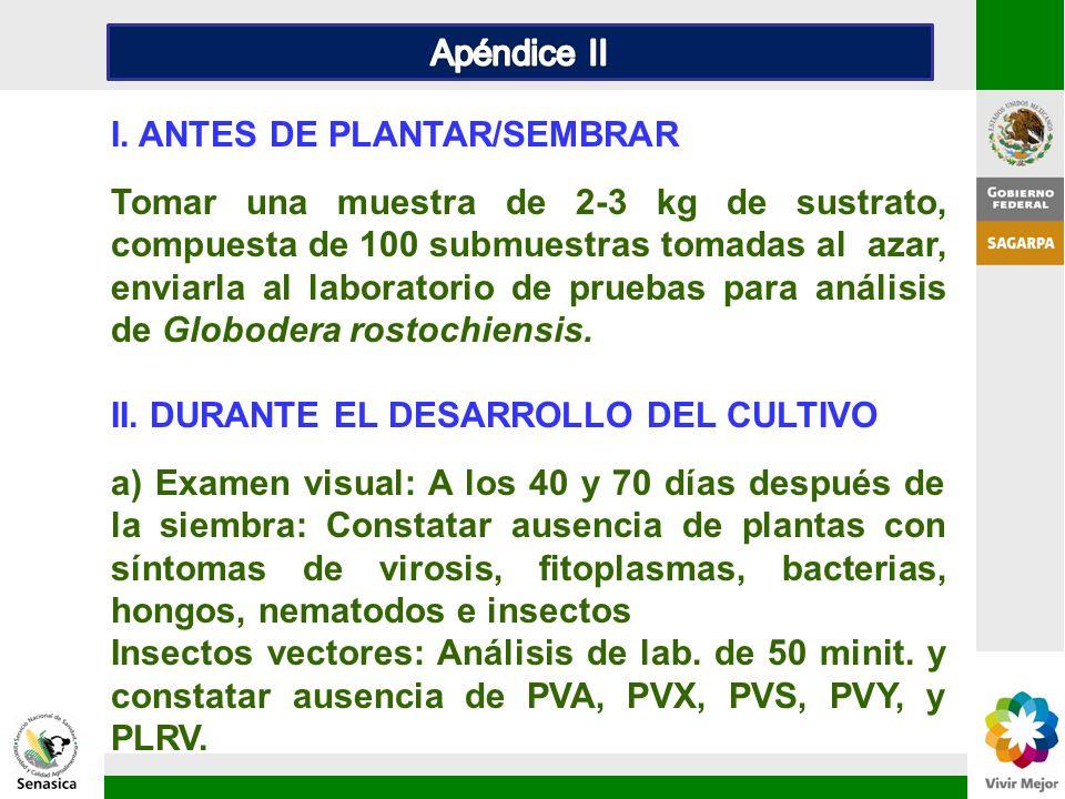 Apéndice II I. ANTES DE PLANTAR/SEMBRAR.
