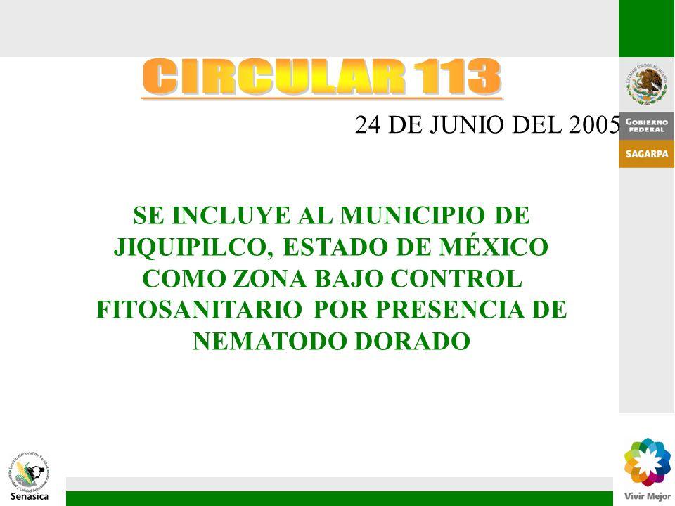 CIRCULAR 113 24 DE JUNIO DEL 2005.